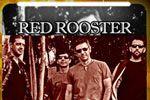 Folder do Evento: Red Rosster