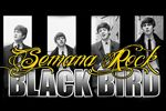 Folder do Evento: Black Bird