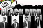 Folder do Evento: Black Bird