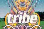 Folder do Evento: Save the date! Vem ai a 50ª edição da TRIBE!