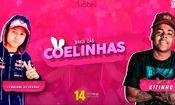 Folder do Evento: Baile das Coelhinhas c/ Mc Kitinho + Dj