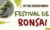 Festival de Bonsai
