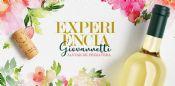 Folder do Evento:  Jantar de Primavera Gio Campinas