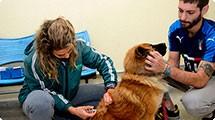 População de rua recebe orientações sobre animais de estimação