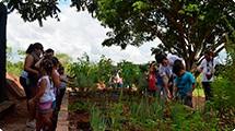 Parque da Cidade promove atividades que unem férias e ecologia
